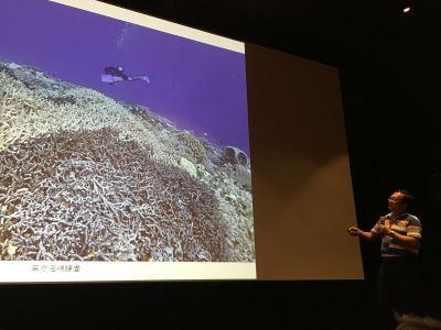 太平島海域生態調查 新紀錄物種高達90種