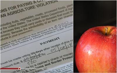機上招待蘋果帶入關  美國海關罰500美元