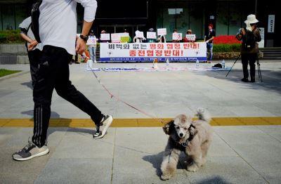 南韓政治兩極化 文在寅為和平冒險一搏