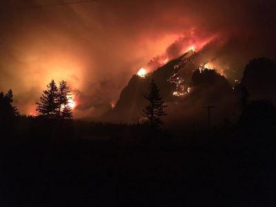 玩火引發森林大火 少年被判賠3660萬美元