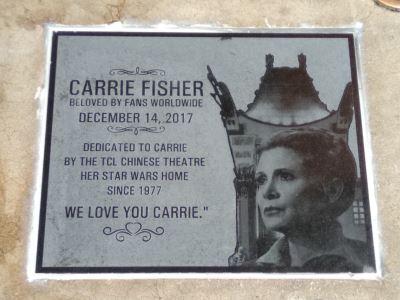 紀念嘉莉費雪 胞弟代揭好萊塢匾牌