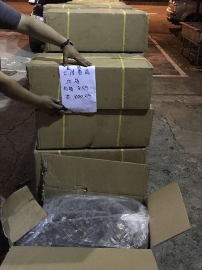 貨輪走私中國香菇 高雄港查獲900公斤逮6人