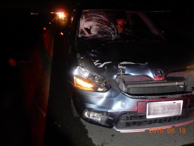 搭便車下車尿尿 男子遭兩車追撞慘死
