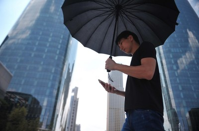 中國網民突破8億人 98%用手機上網