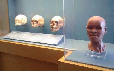 里約博物館大火燒毀文物 專家建議用3D列印重建