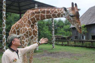 頑皮世界動物園長頸鹿  遊客面前倒地死亡