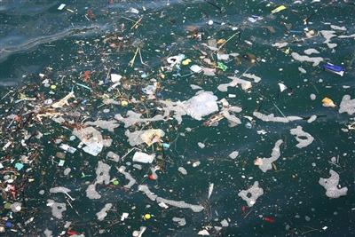 杜絕海洋汙染  歐盟同意禁用多種一次性塑膠製品