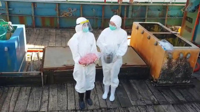 陸船越界捕撈 海巡登檢搜到5.7公斤豬肉
