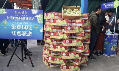 行銷台東綠金 饒慶鈴廣州請吃鳳梨釋迦