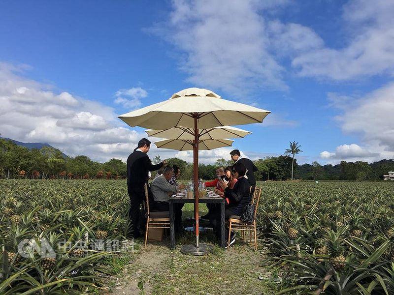 花蓮富興村主要生產土鳳梨,在社區努力下當地也發展成旅遊景點,不只可親手採鳳梨,還能在田野中享受美食美景。(業者提供)中央社記者陳葦庭傳真 107年3月6日