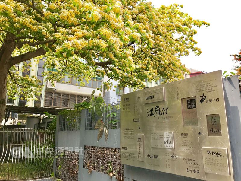 台電魚木因屬珍貴外來加羅林魚木,是台北市政府文化局樹木編號第705號的「受保護樹木」。(台電提供)中央社記者邱柏勝傳真 107年4月14日
