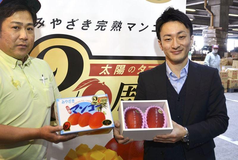 「太陽之子」芒果屬日本最高檔芒果。(共同社提供)