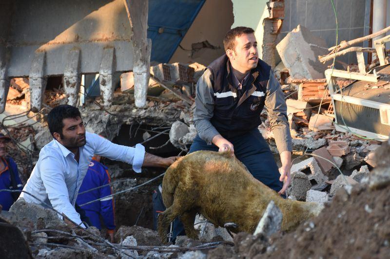 土耳其東南部的阿德亞曼省24日清晨發生地震,造成13人受傷,數棟建築毀損。(安納杜魯新聞社提供)