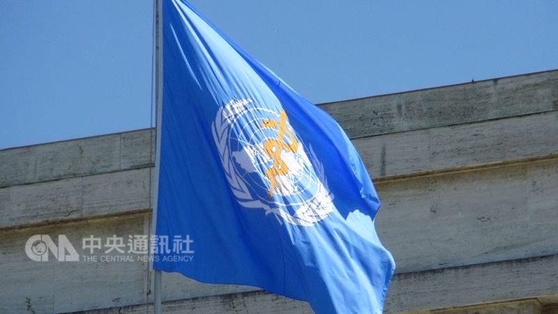 圖為世界衛生組織旗幟。(中央社檔案照片)