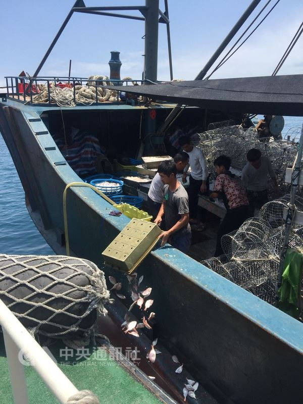 中國大陸正值海洋伏季休漁期間,澎湖海巡隊21日查獲一艘陸籍漁船在澎湖花嶼海域越界捕魚,船上所捕獲的500公斤漁獲全數海拋。(澎湖海巡隊提供)中央社 107年5月21日