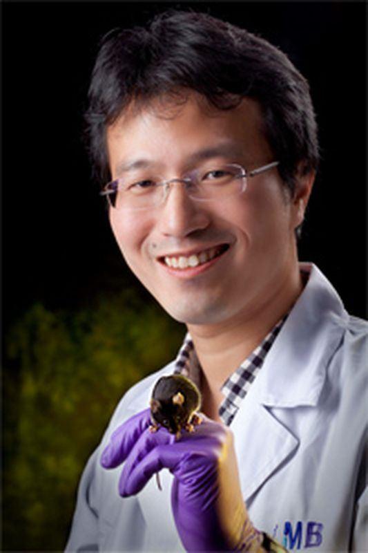 中研院分子研究所助研究員陳俊安(圖)的研究中,證實微型核糖核酸對調控運動神經元的存活與功能扮演關鍵性角色。(圖取自中研院分子生物研究所網頁www.imb.sinica.edu.tw)