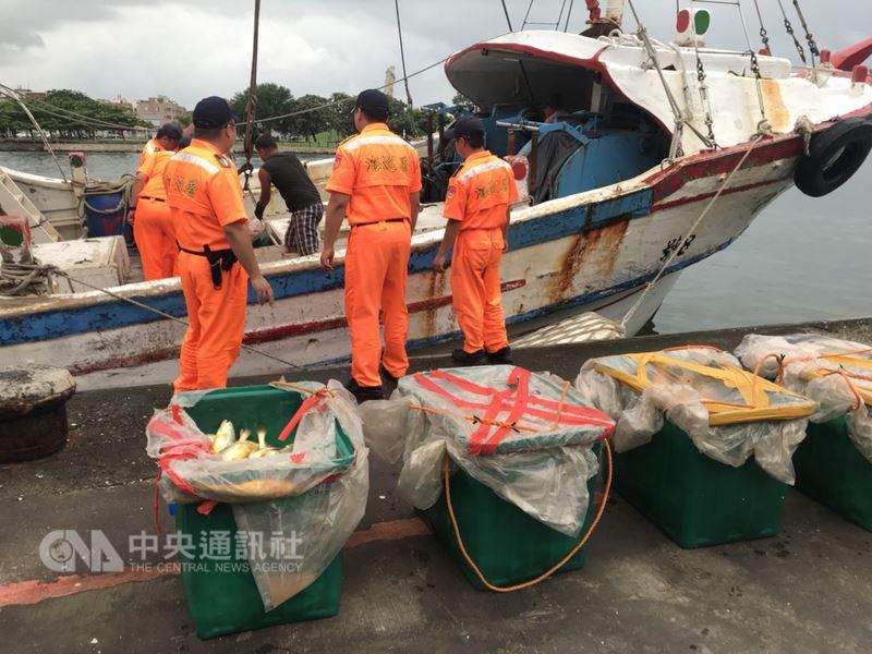 台南將軍籍漁船「春吉8」22日下午報驗進入安平港時,遭查出漁獲非自行捕撈而是赴中國大陸沿海運載,全案依法送辦。(海巡署提供)中央社記者張榮祥台南傳真 107年6月23日