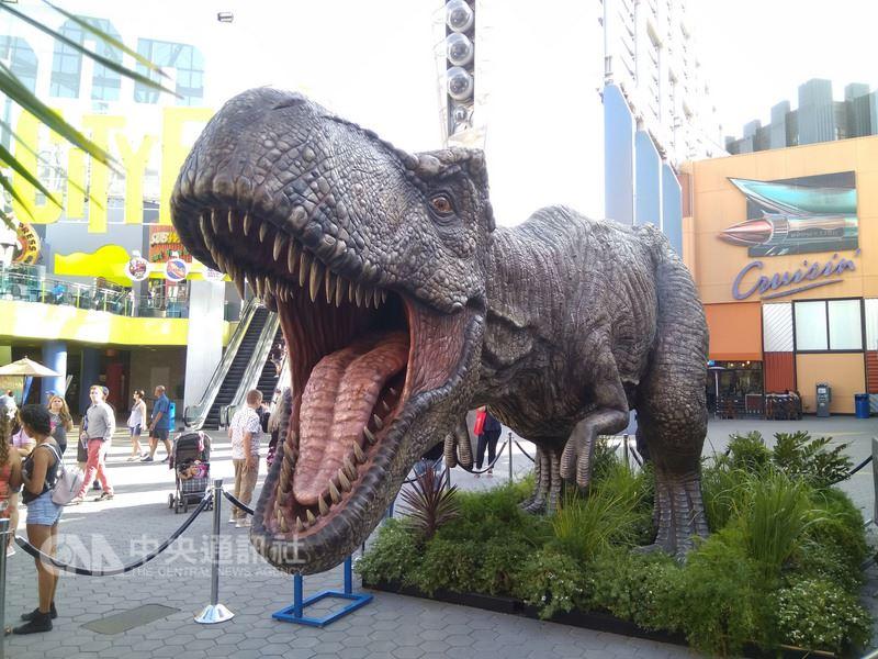 片商環球影業大搞噱頭,打造原始尺寸暴龍模型,陳列在好萊塢環球影城廣場。中央社記者曹宇帆洛杉磯攝 107年6月23日