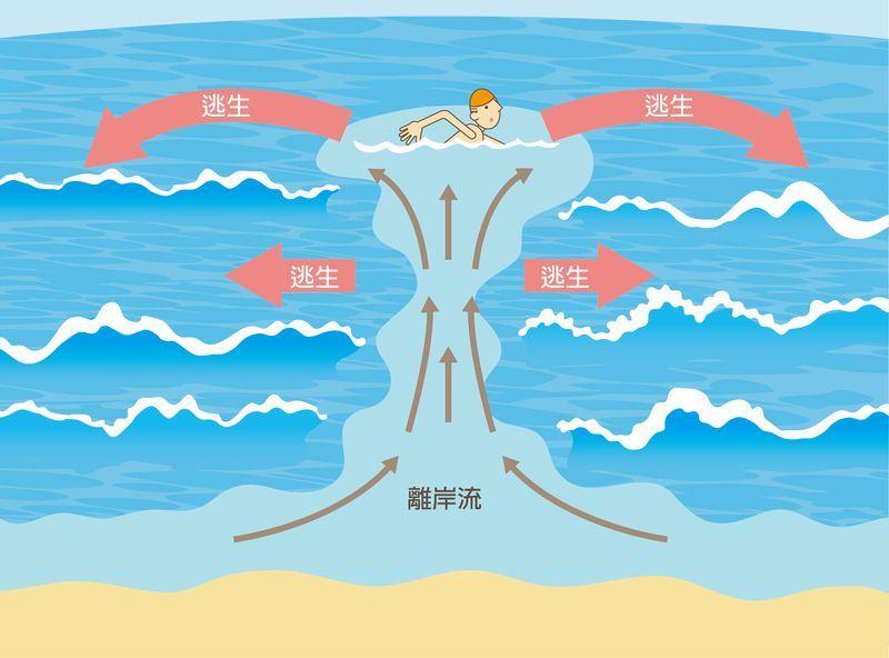 脫離離岸流的技巧,是由平行陸地的方式往離岸流的兩側游開。(圖取自中央氣象局數位科普網pweb.cwb.gov.tw)