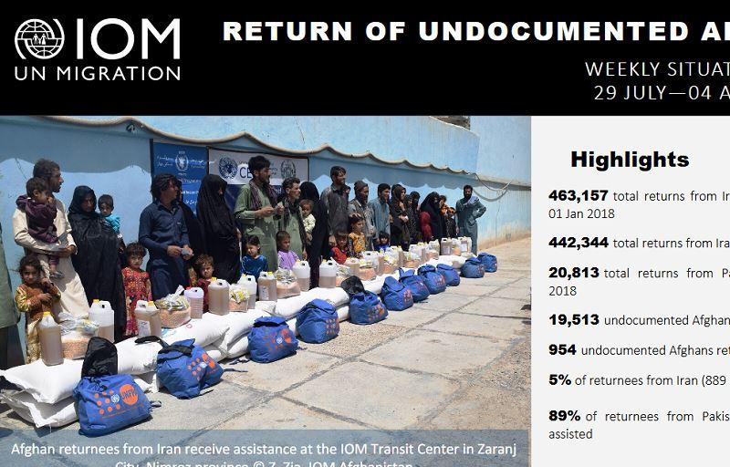 國際移民組織的數據顯示,今年頭7個月有44萬2344名阿富汗人自伊朗返國,人數是去年同期的一倍多。(圖取自國際移民組織網頁iom.int)