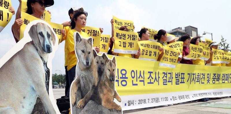 韓國公民請願修法禁食狗肉,青瓦台10日回應正積極考慮修法,期與民眾充分討論,分階段改善相關規定。(檔案照片/韓聯社提供)