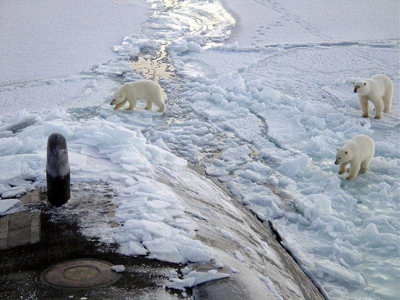 科學家提出報告指出,由於全球暖化,北極和其他地區溫差縮小,造成天氣型態在同一地點停留更久,北半球豪雨和酷熱天氣將更極端。(圖取自Pixabay圖庫)