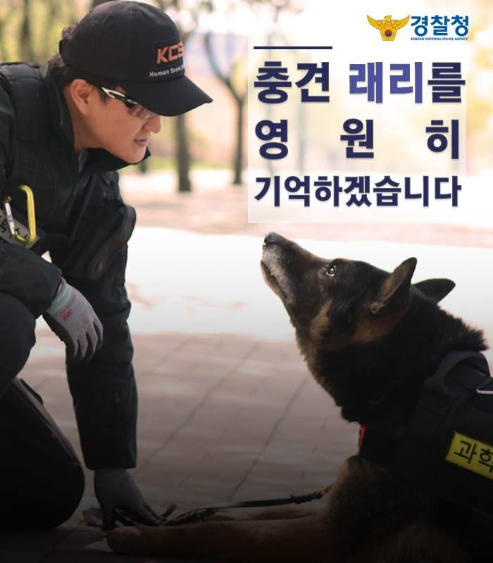 服役多年的南韓警犬賴瑞在值勤時不幸遭蛇咬死,警方將在9月舉行儀式向牠致敬。(圖取自大邱地方警察廳臉書facebook.com/daegupol)