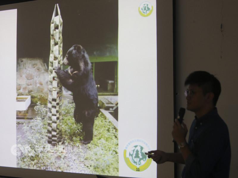 農委會特有生物研究保育中心低海拔試驗站目前圈養7隻亞洲黑熊,助理研究員林彥博11日在記者會中說明如何以報廢消防水帶製作藏食袋,讓黑熊透過本能去覓食,以達餵食豐富化目的。中央社記者徐肇昌攝 107年9月11日