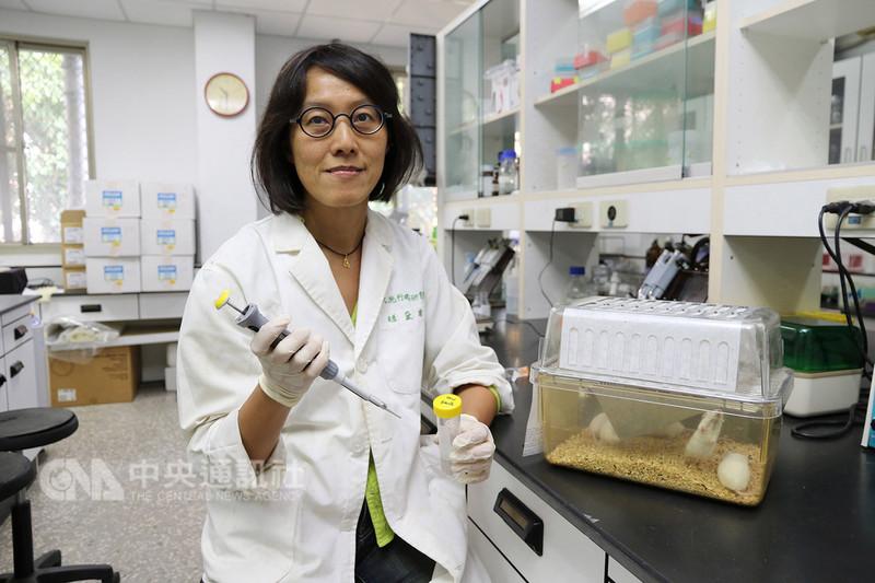 中興大學獸醫學院微生物暨公共衛生學研究所教授趙黛瑜等人組成的研究團隊,研發新一代登革熱疫苗,10月登上國際重要期刊eLIFE。(中興大學提供)中央社記者趙麗妍傳真 107年11月9日