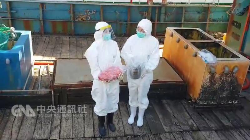 一艘中國漁船18日在彭佳嶼海域越界捕魚,海巡登船檢查在冰箱發現4.4公斤生豬肉,另有1.32公斤豬肉正在燉煮,防疫人員將豬肉密封消毒後封存在冰箱中,將隨船遣返。(翻攝照片)中央社記者王朝鈺傳真 107年12月19日