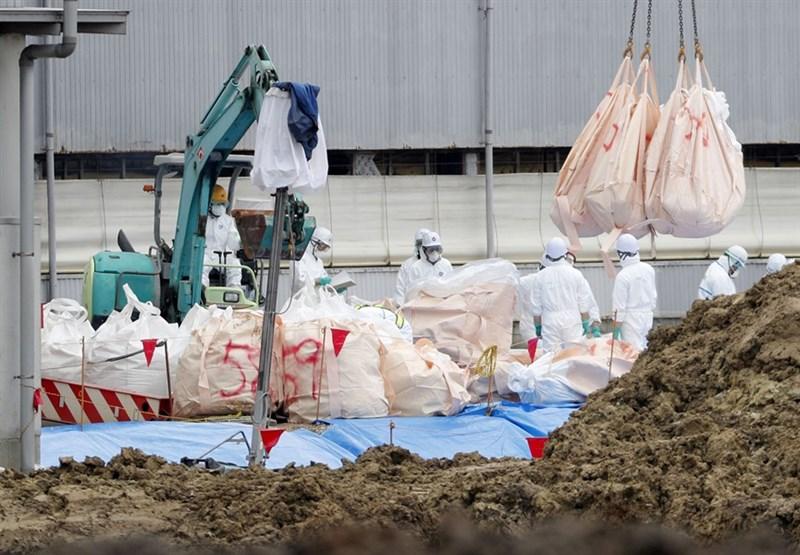 日本豬瘟疫情蔓延5府縣,部分養豬業者要求使用豬瘟疫苗,但農林水產省擔心一旦使用疫苗,恐不利豬肉出口,目前態度是備而不用。圖為9日豬隻撲殺作業。(檔案照片/共同社提供)