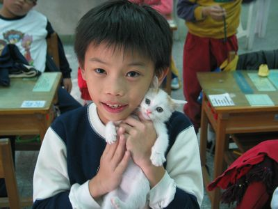 校犬猫陪伴学生成长