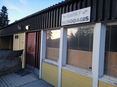 几乎每个社区都设有小狗幼儿园,主人若要上班,可将毛小孩日托在这里。