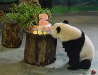 圓仔2歲生日 保育員做蛋糕祝賀(2)