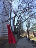 多大駐校藝術家 籲正視原民受害婦女