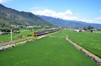 台東火車奔馳 最美移動風景(2)