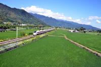 台東火車奔馳 最美移動風景(1)