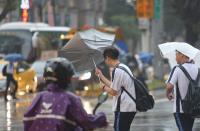 強風吹 傘開花