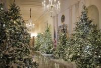 白宮迎耶誕 白色系慶悠久傳統
