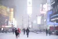 紐約市進入緊急狀態