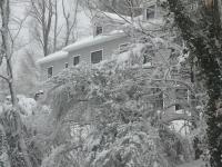 暴风雪袭纽约  长岛积雪盈尺