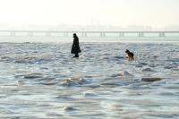 青岛胶州湾现海冰