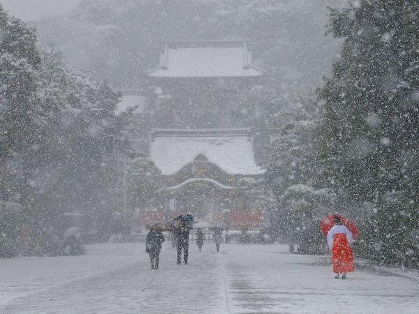東京大雪2死719傷 行旅應注意安全