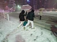 東京降雪 行人大雪中過馬路