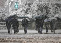 日本關東大雪