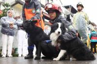 搜救犬頻頻低鳴  隊員頻頻安撫