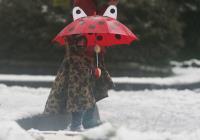 小朋友精心打扮賞雪趣