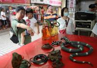 亞洲蛇肉店熄燈轉型(2)