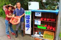 創意火龍果得來速 映照出台灣最美風景
