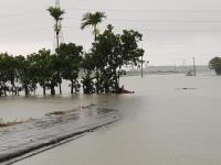 豪大雨侵襲 雲林北港溪防汛道路旁汪洋一片